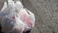 Uporaba plastičnih vrećica u Hrvatskoj
