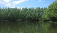 Kopački rit – park prirode
