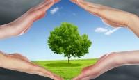Što je ekologija