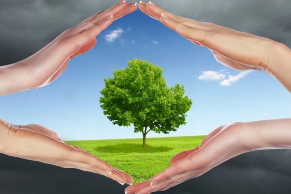 ekološka svijest