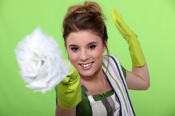 ekološko čisćenje doma