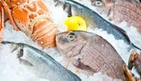 Izlov ribe
