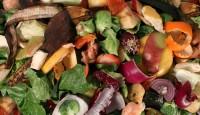 Kompost na prirodan način