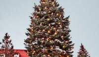 Kako reciklirati Božić