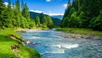Kako možemo zaštititi prirodu