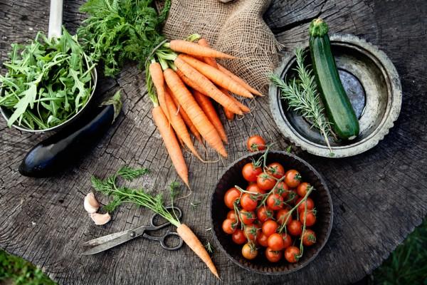 organsko povrće