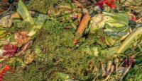Kućno kompostiranje otpada