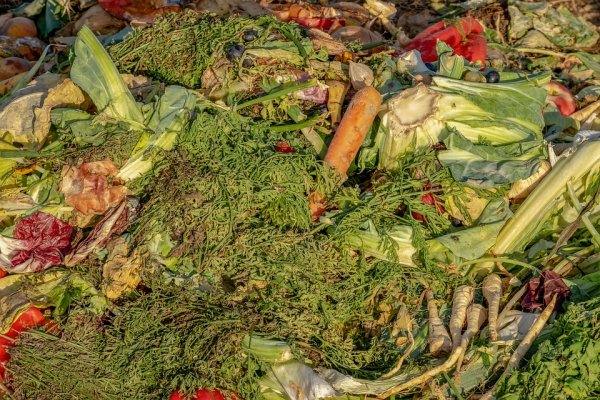 kompostiranje-otpada