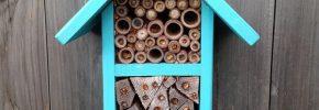 Kako napraviti kućicu za pčele